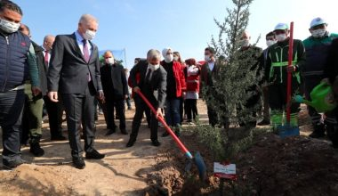 Gaziantep'te 4 milyon fidan toprakla buluştu
